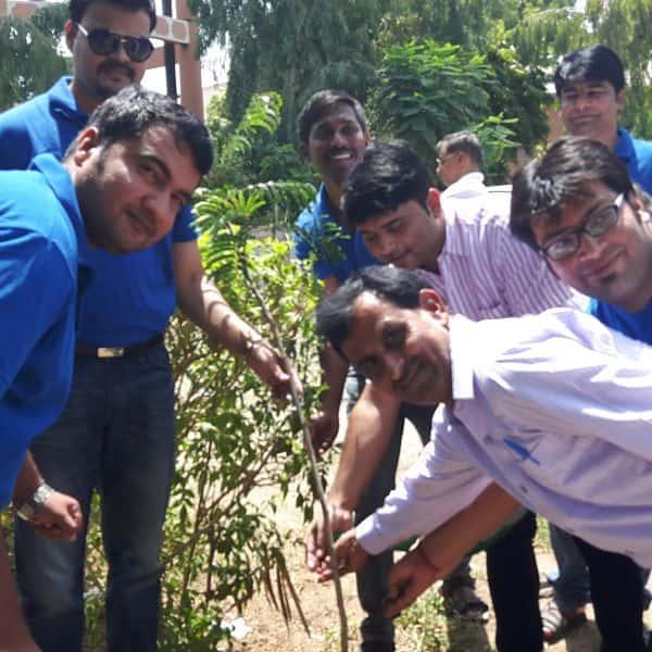 Tree Plantation-2